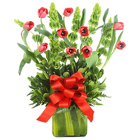 Bright Mignon Red Tulips Harmonize